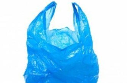 Article : Sacs plastiques : véritable danger pour l'environnement et aussi risque sanitaire pour l'homme.